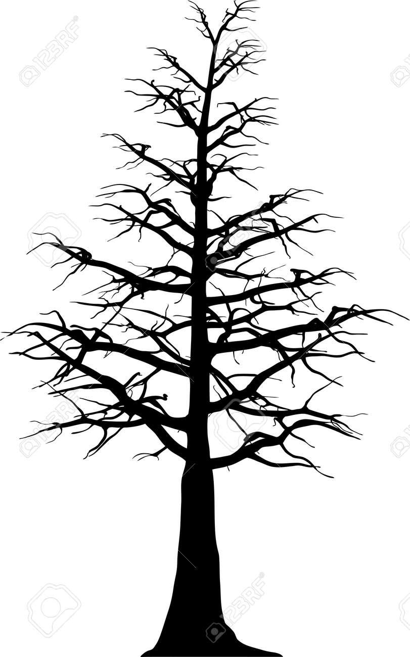 Pine Tree Stencil Pine tree stencil tree tree