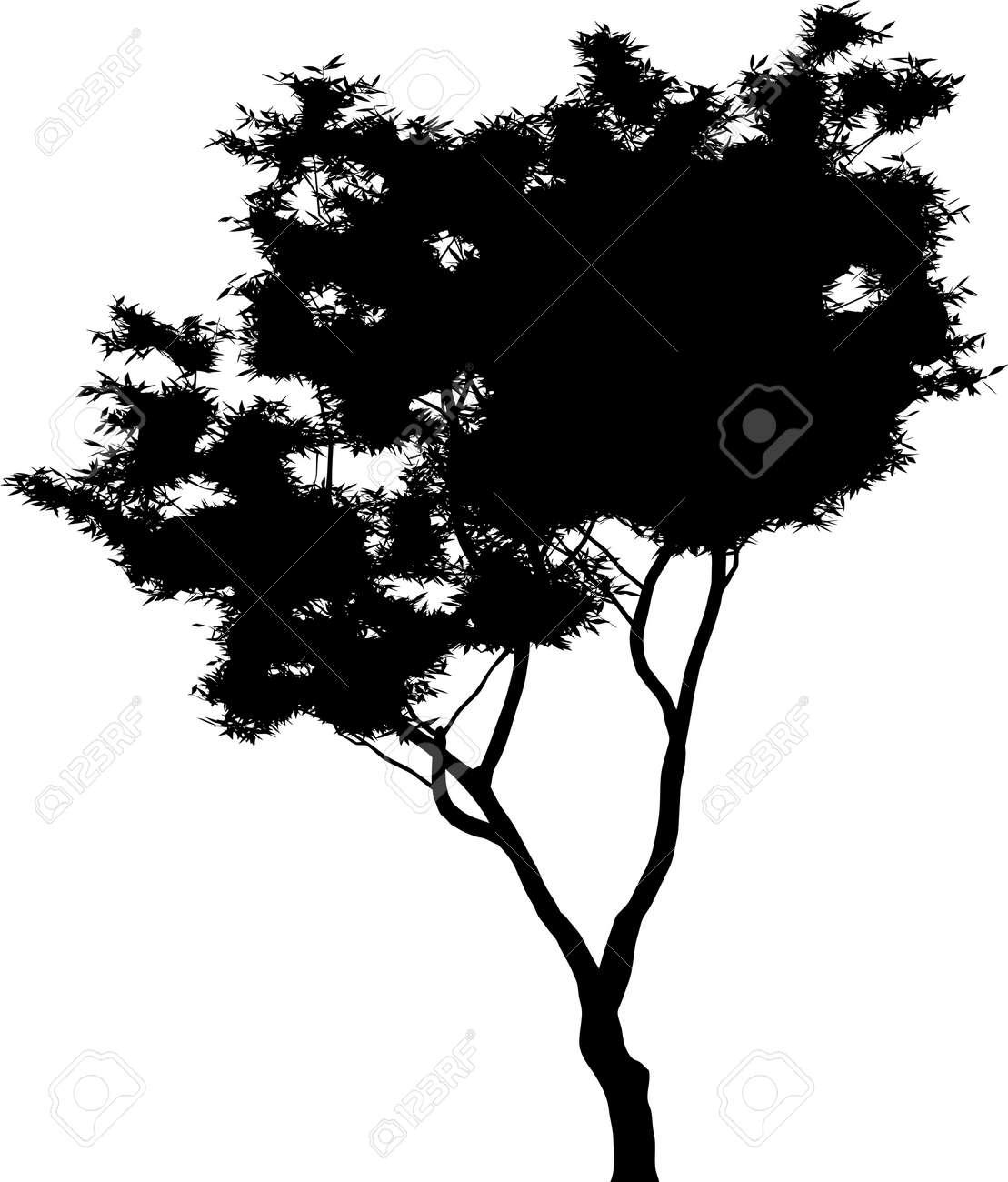 Tree Stock Vector - 7334352