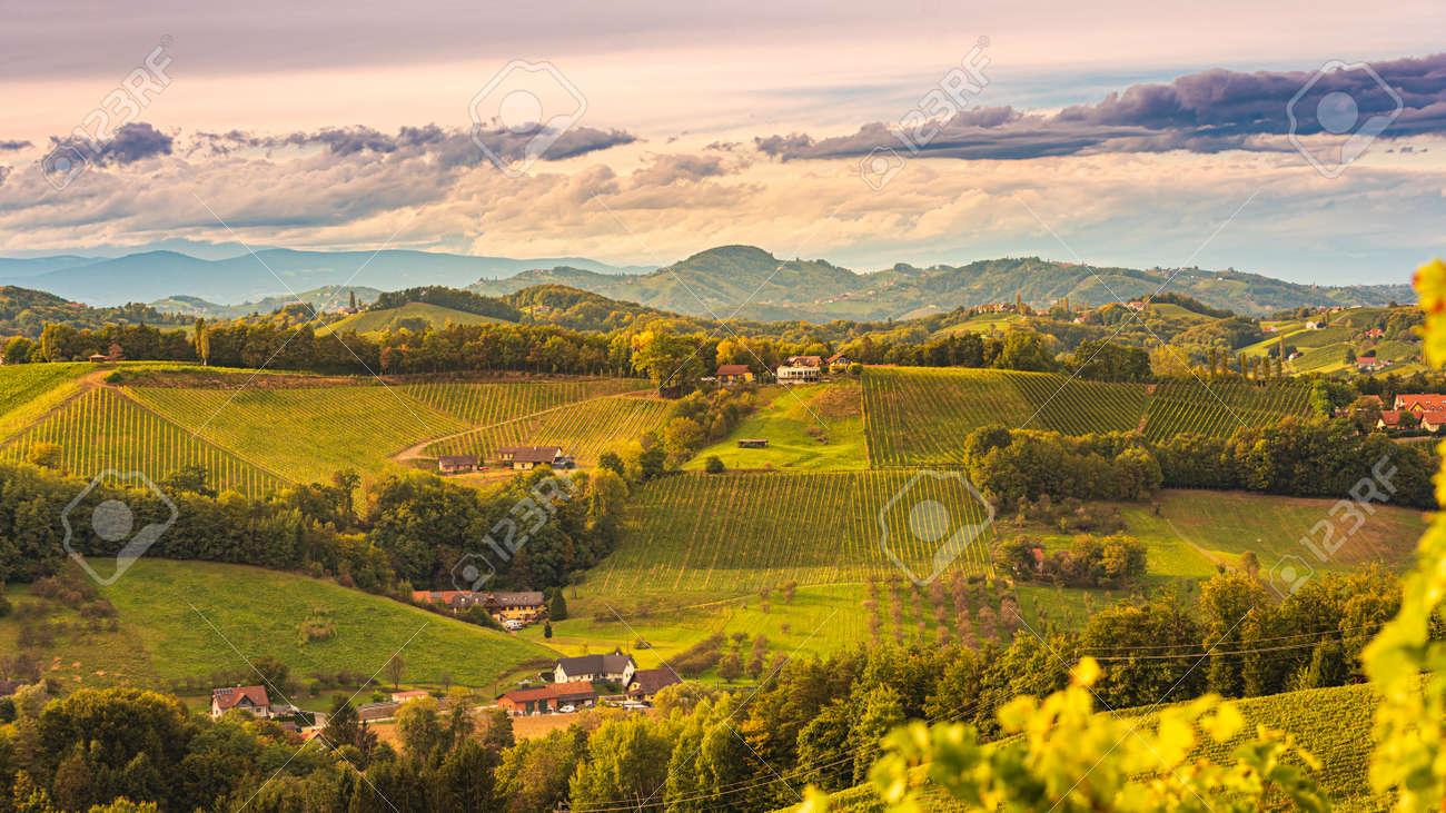 South styria vineyards landscape, near Gamlitz, Austria, Eckberg, Europe. Grape hills view from wine road in autumn - 157301893
