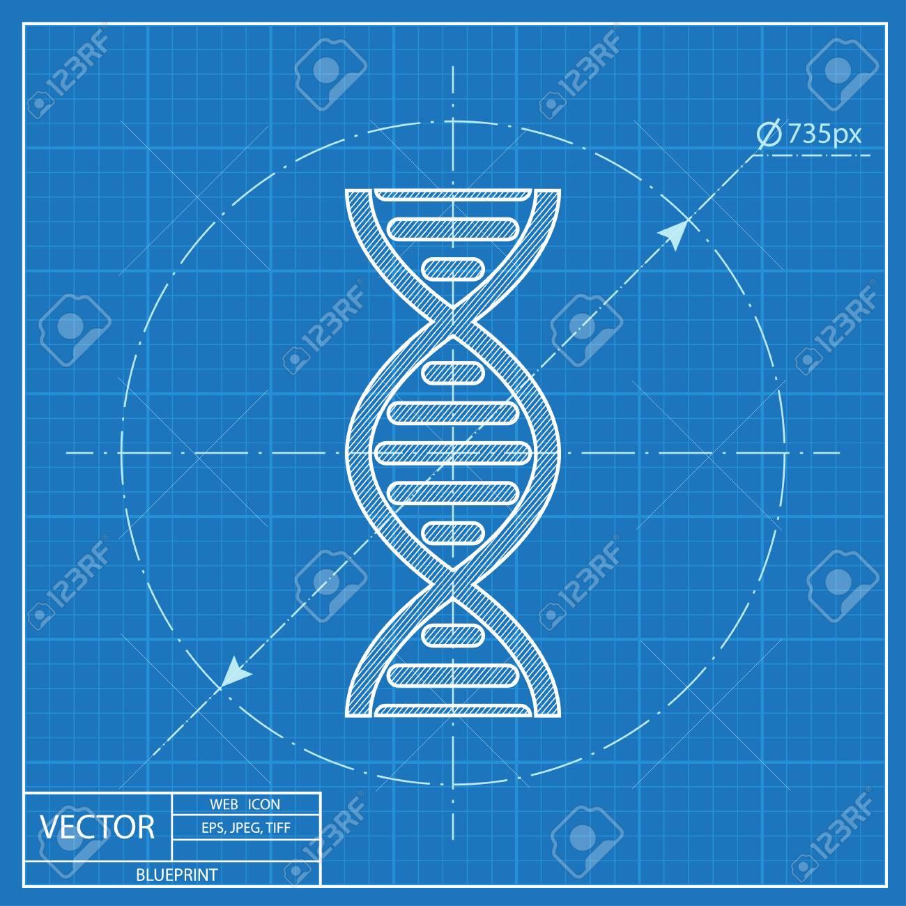 Vector dna molecule blueprint icon royalty free cliparts vectors vector vector dna molecule blueprint icon malvernweather Choice Image
