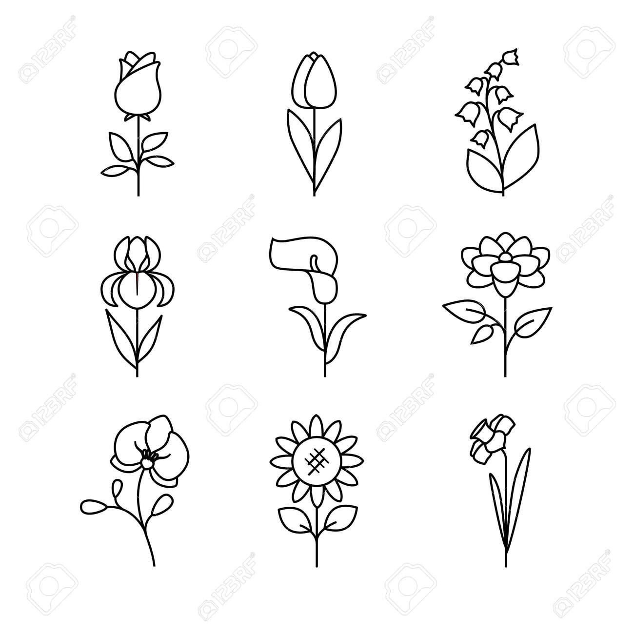 Popular wedding flowers blossoming thin line art icons set popular wedding flowers blossoming thin line art icons set modern black symbols isolated on biocorpaavc