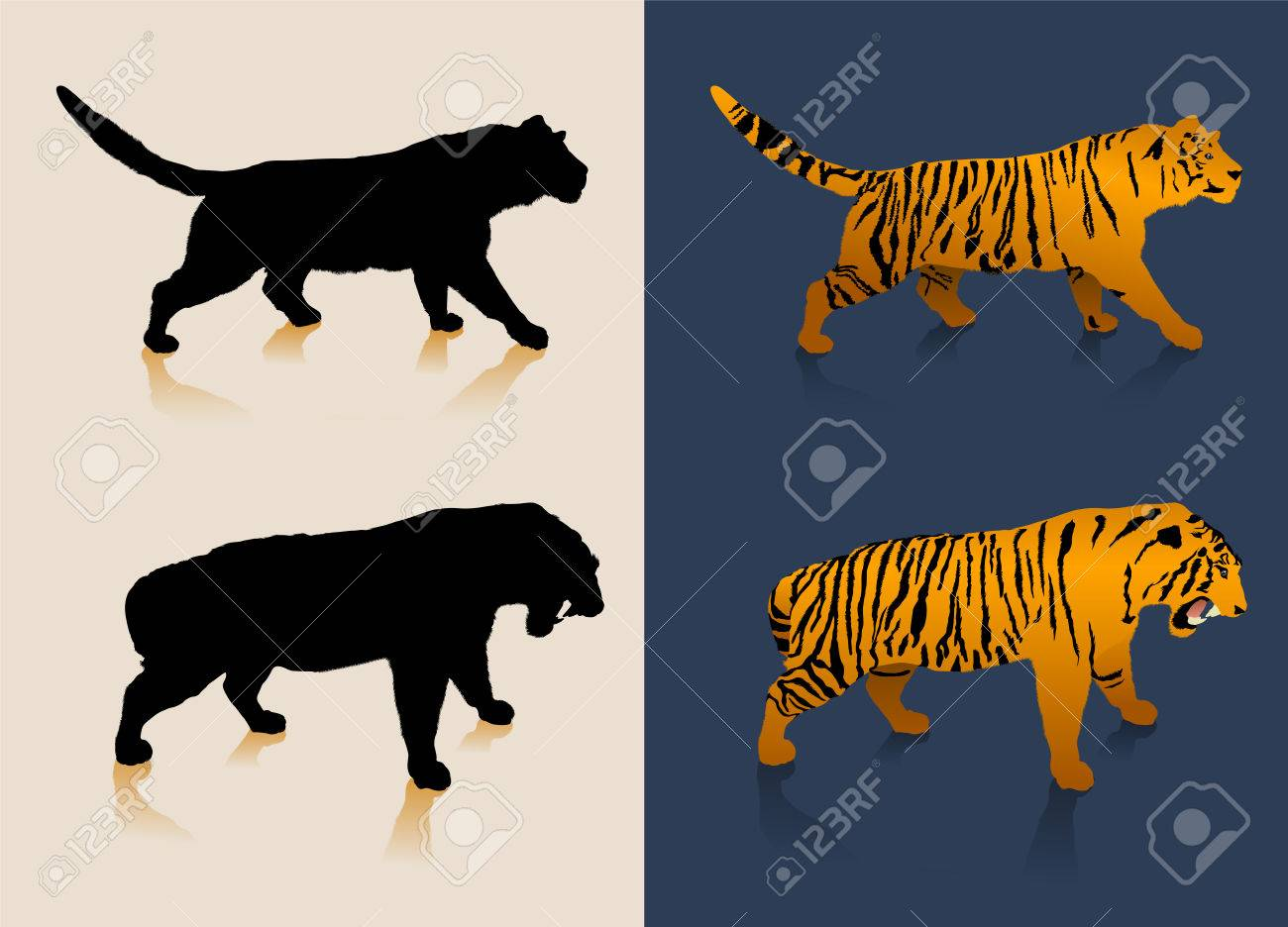 Black and white tiger silhouettes and color images Stock Vector - 5798809