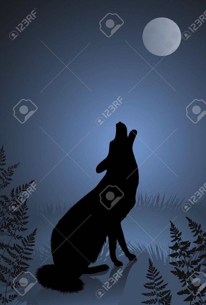 Wild wolf / coyote howling at the full moon Stock Vector - 5876415