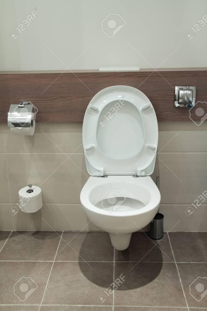 Home flush toilet (toilet bowl, paper) Stock Photo - 22035418