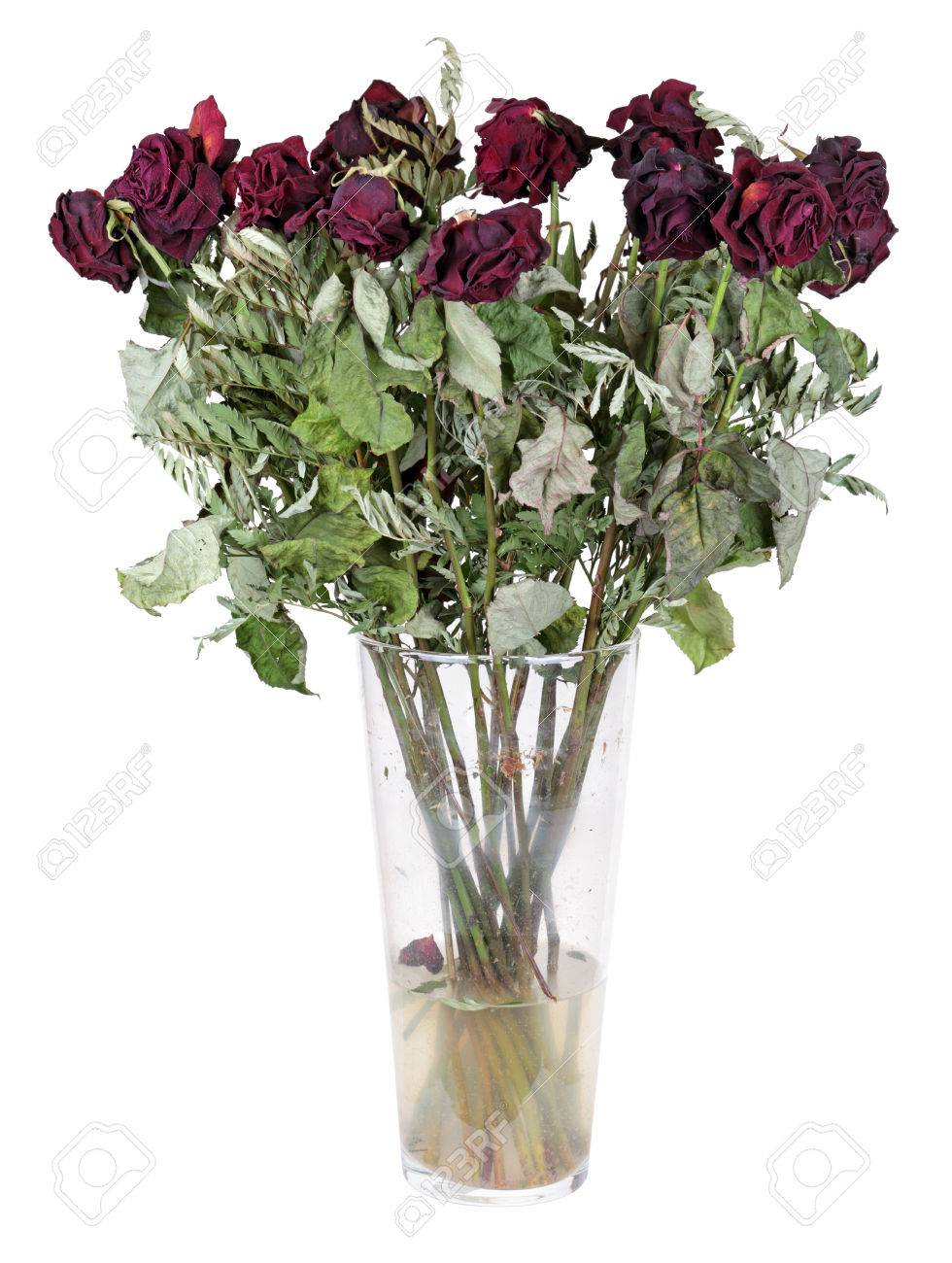 A Glass Vase With The Dead Bouquet Of Roses Isolated On White