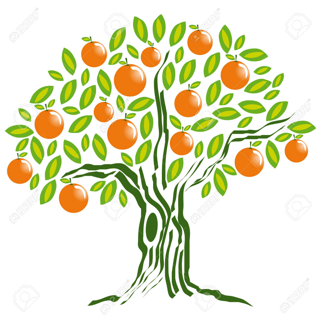 orange tree  orange tree Orange Tree Vector