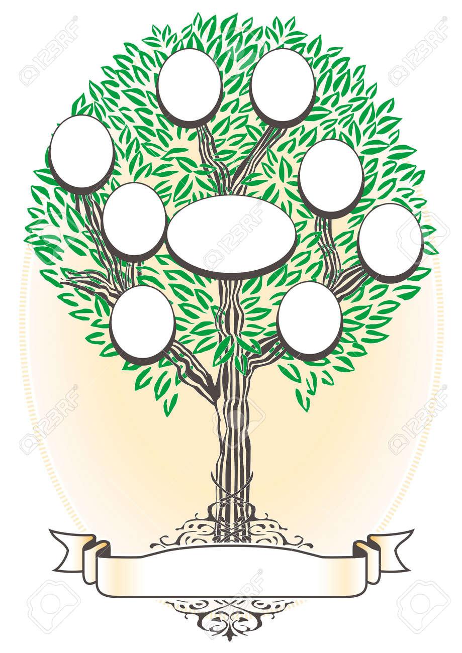Family Tree - Genealogy Stock Vector - 7796259