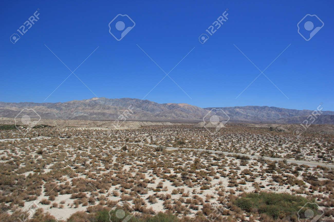 Thousand Palms Oasis Preserve Near Thousand Palms Oasis