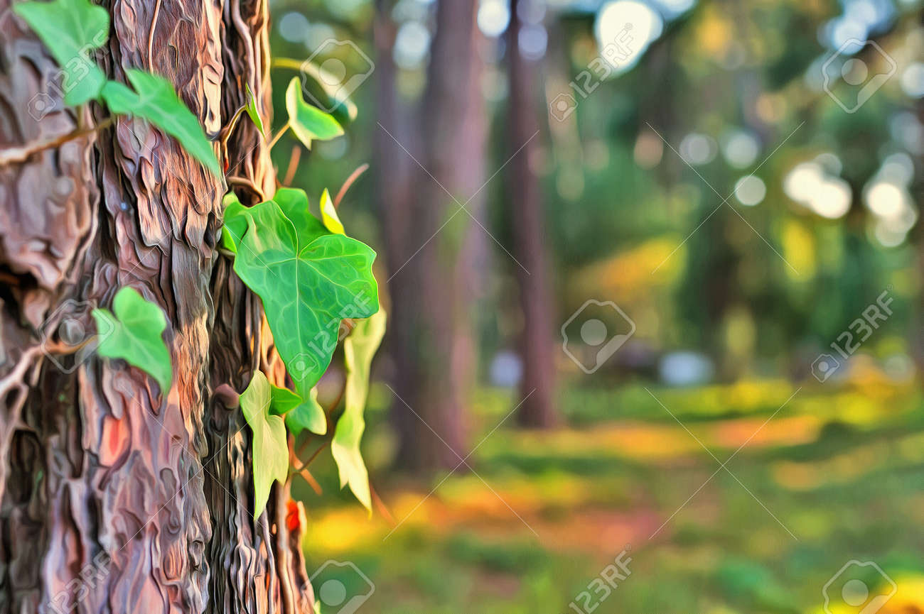 Colorful Painting Of Old Tree Bark Texture Stock Photo, Picture And ...