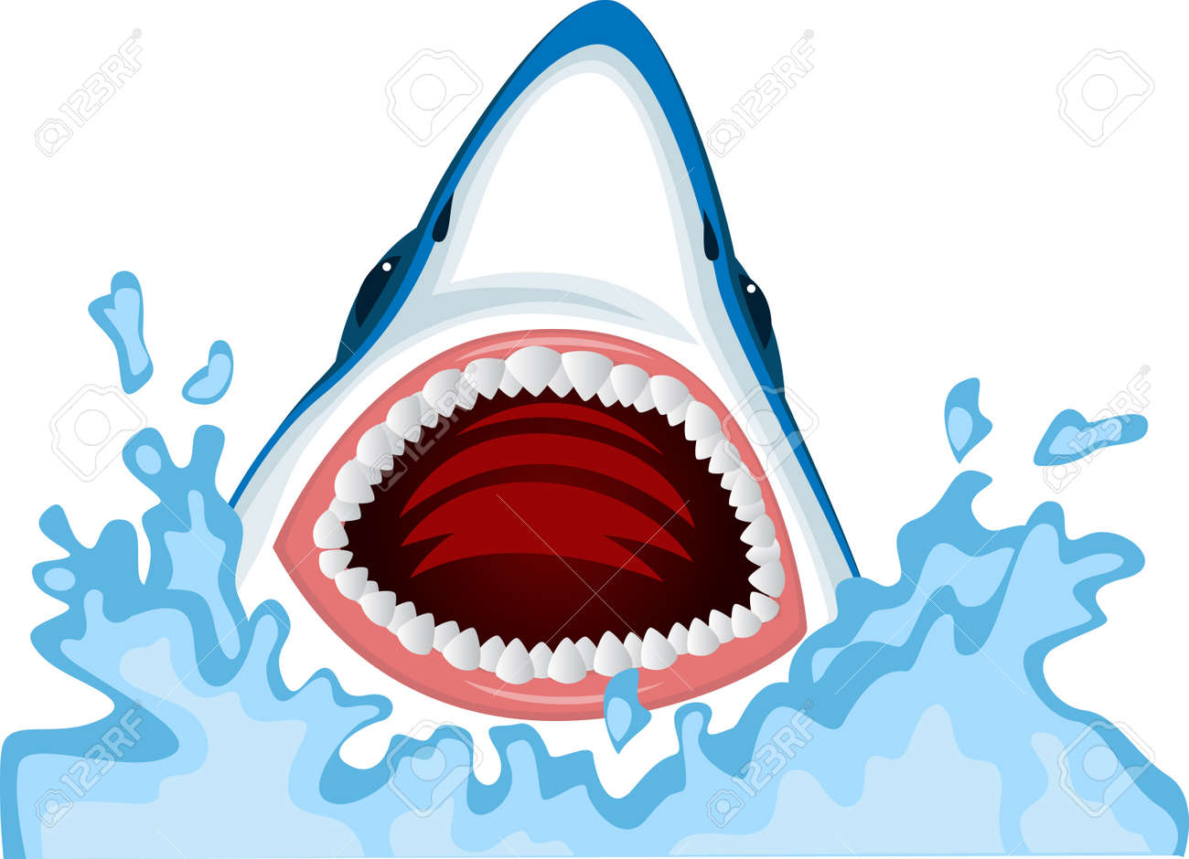 Angry shark Stock Vector - 13446415