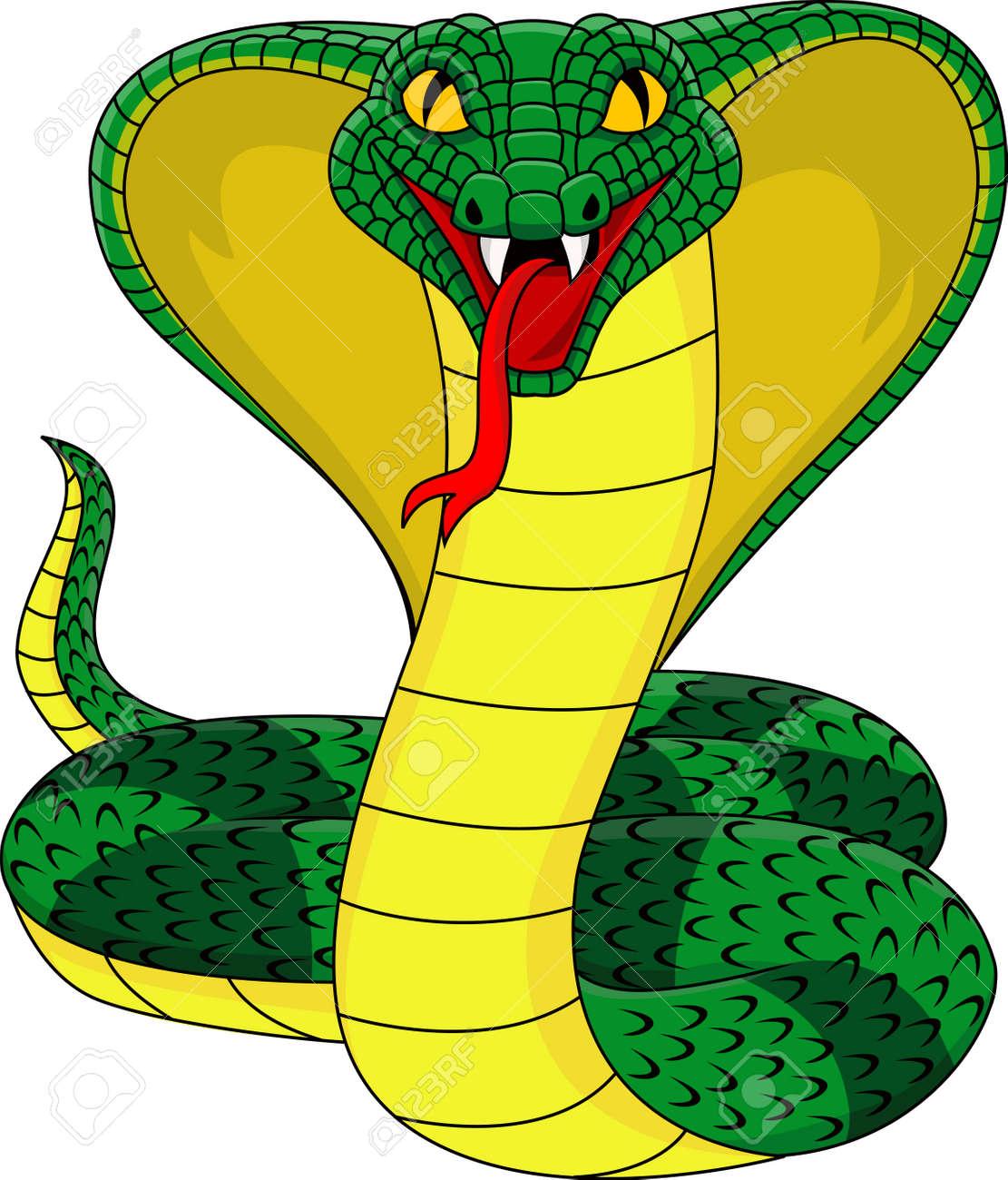 King Cobra Royalty Free Cliparts, Vectors, And Stock Illustration ...