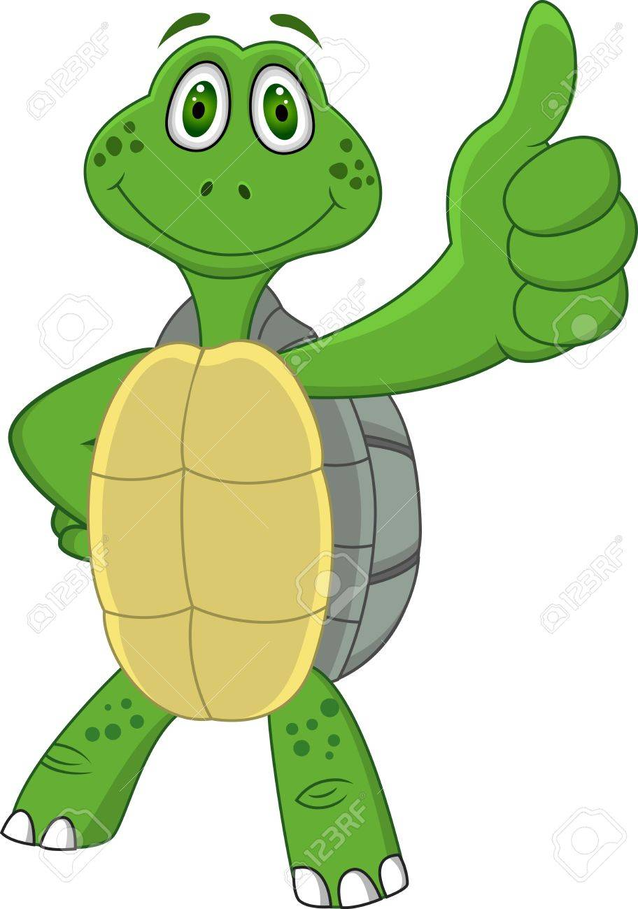 Turtle with thumb up Stock Vector - 13446443