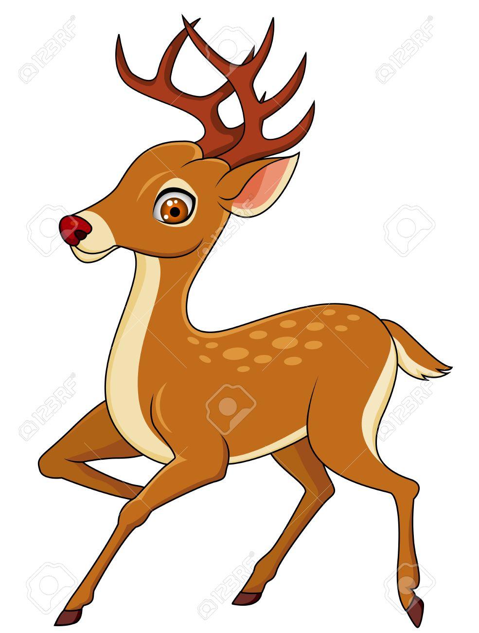 Deer cartoon - 13494851
