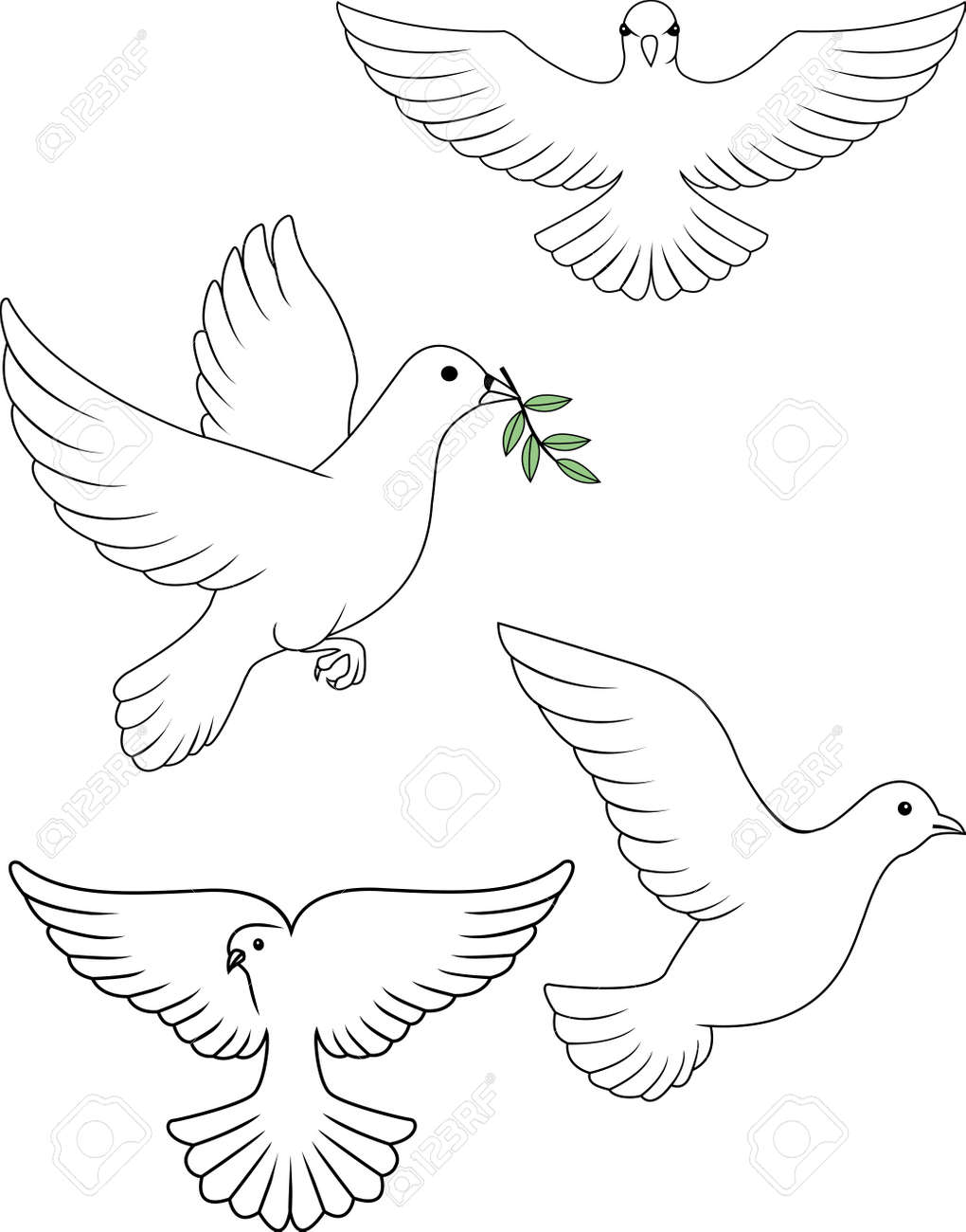 dove vector royalty free cliparts vectors and stock illustration rh 123rf com dove vector freepik dove vector files