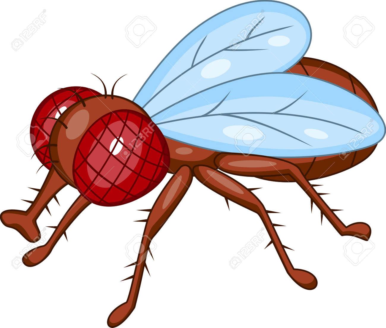 fly cartoon Stock Vector - 13494982