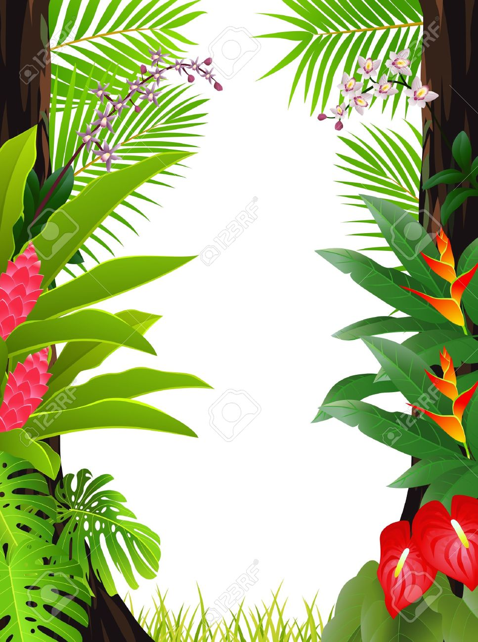 amazon rainforest trees clipart. tropical forest background stock vector 13497111 amazon rainforest trees clipart
