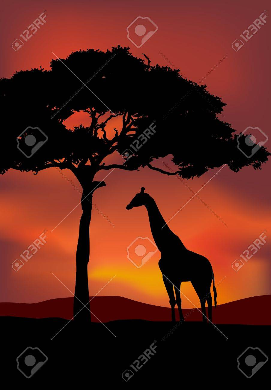 African Sunset background with giraffe Stock Vector - 13497105