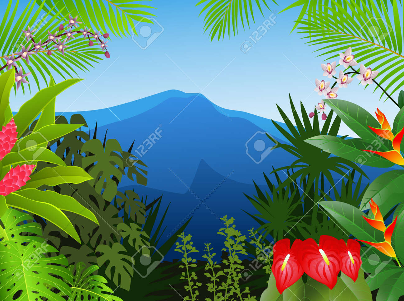 tropical forest background royalty free cliparts vectors and tropical forest background stock vector 13726431