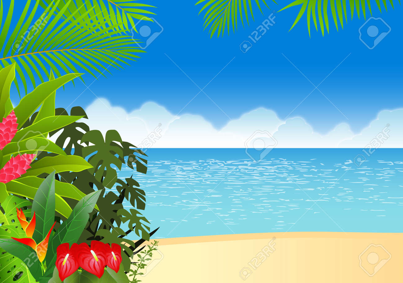 Tropical forest Stock Vector - 13781445