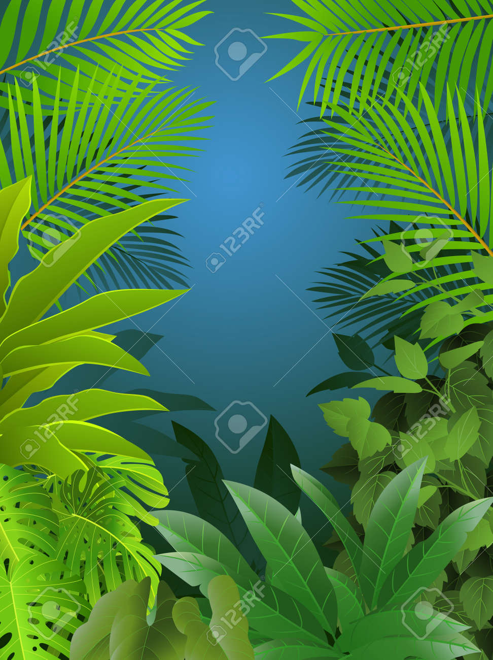 Tropical forest background - 13781442