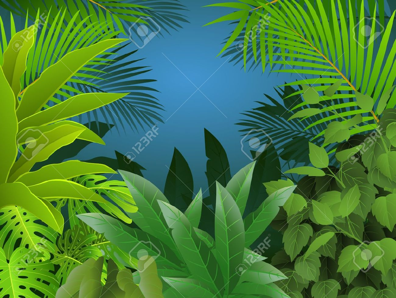 Tropical forest background - 13781441