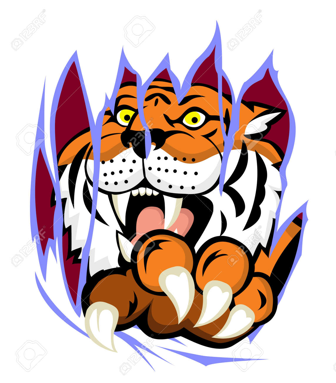 Tiger with claw tearing the background - 13984217