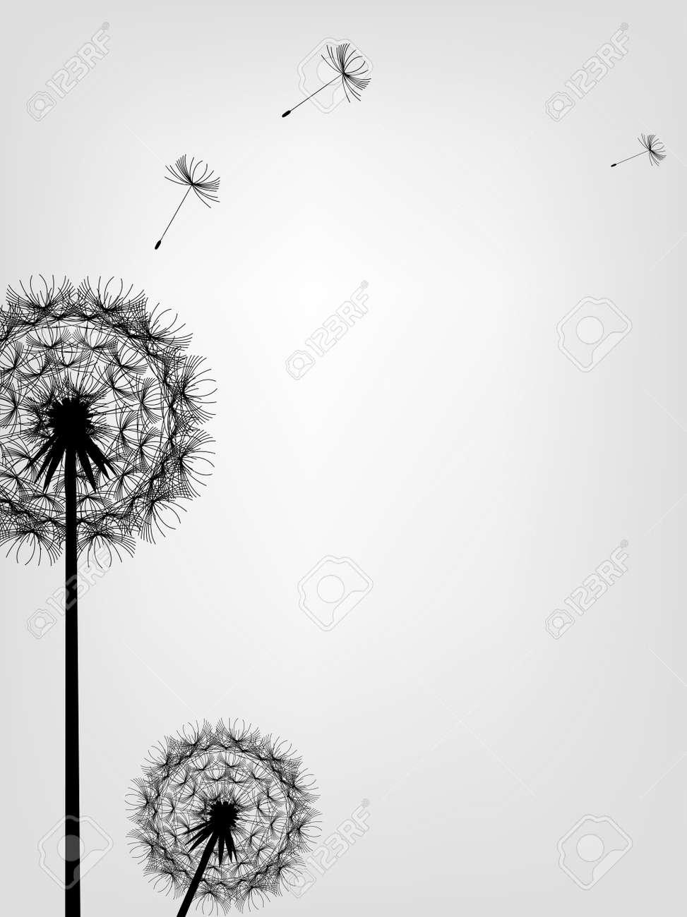 illustration of Dandelion background - 14325354