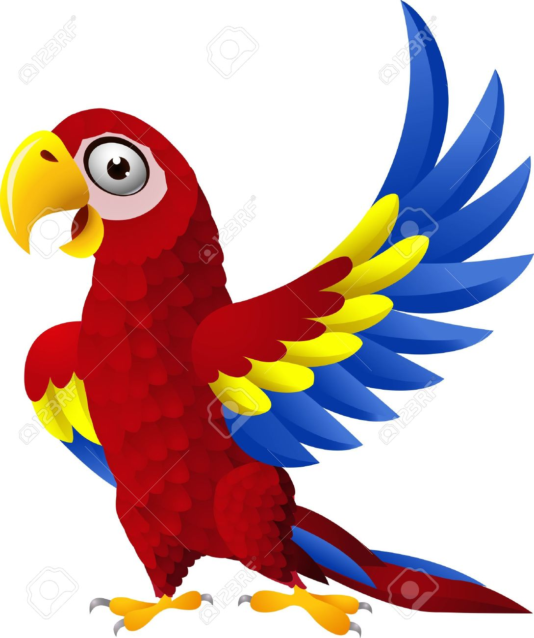 illustration of Detailed funny macaw bird cartoon Stock Vector - 14324594