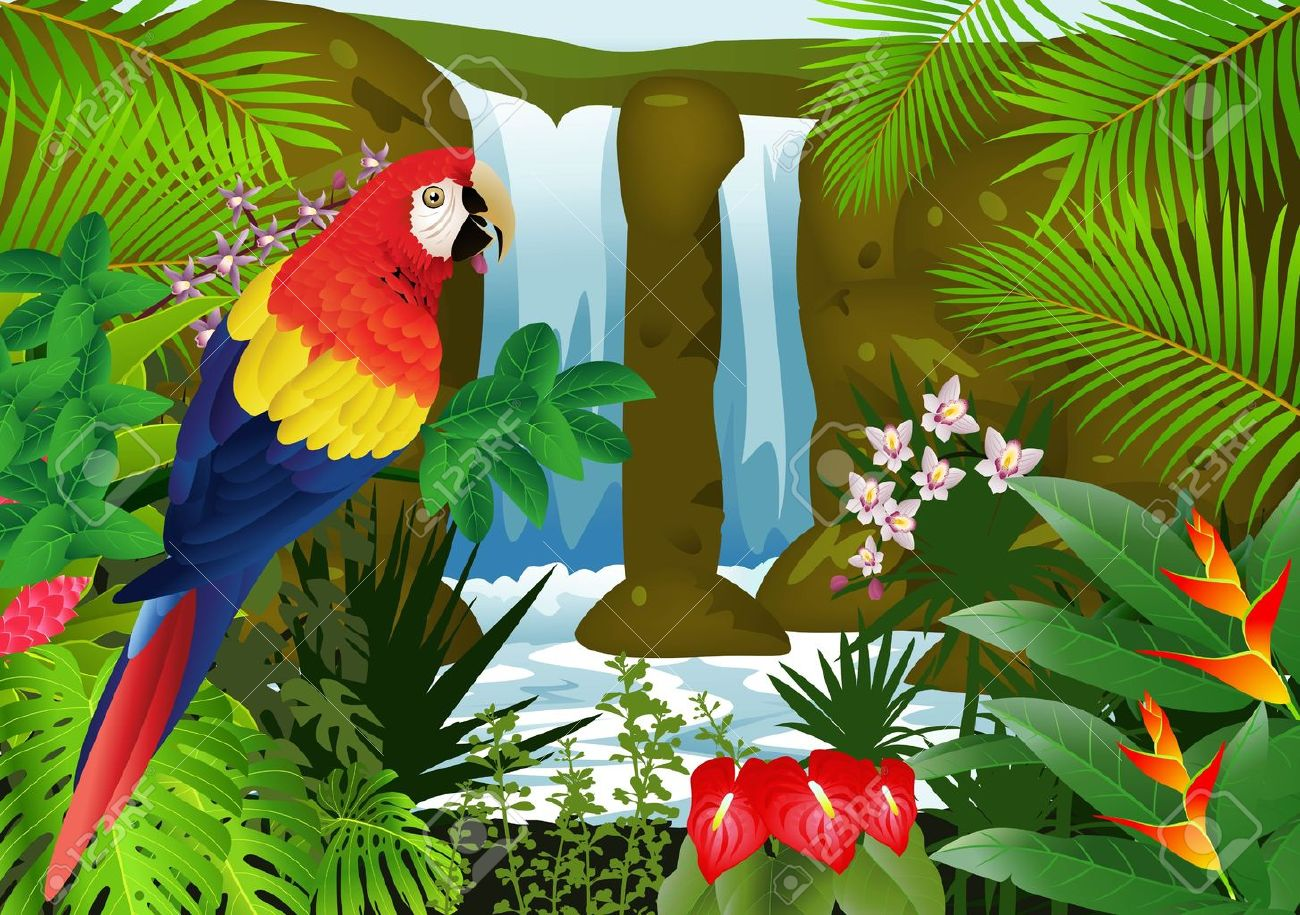 illustration of Macaw bird with waterfall background - 14324651