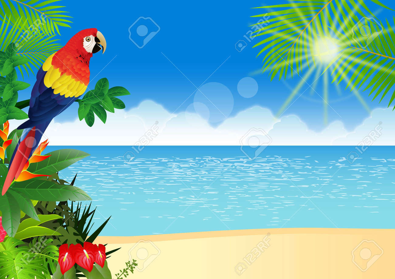 illustration of Macaw with tropical beach background - 14324341