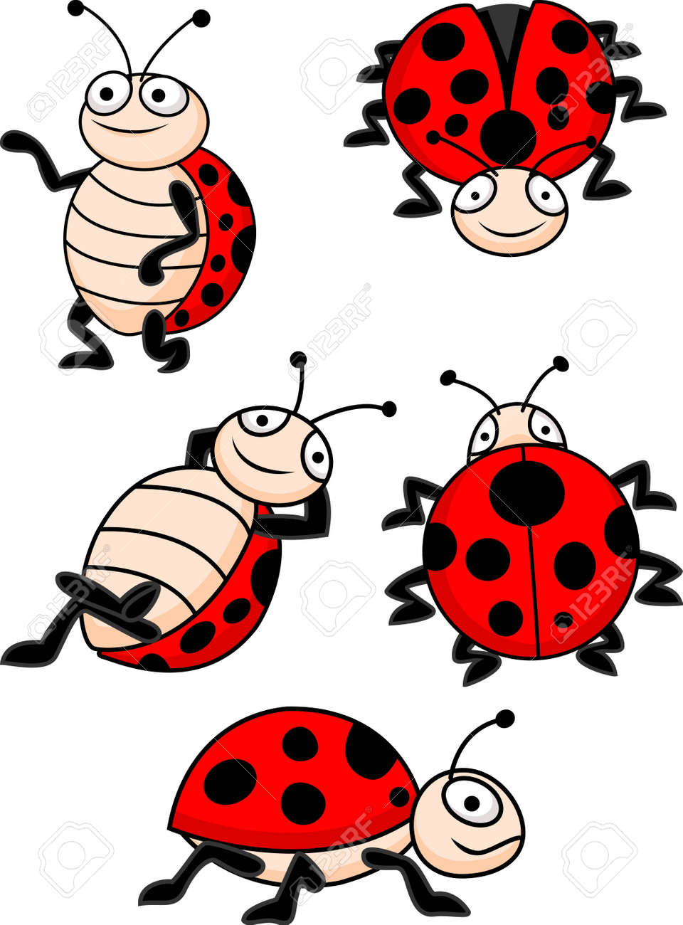 illustration of Ladybug collection Stock Vector - 14320722