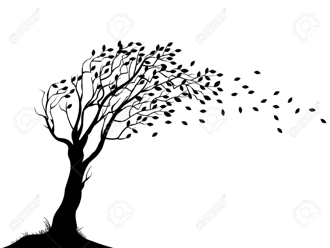 Autumn tree silhouette vector - Polyvore