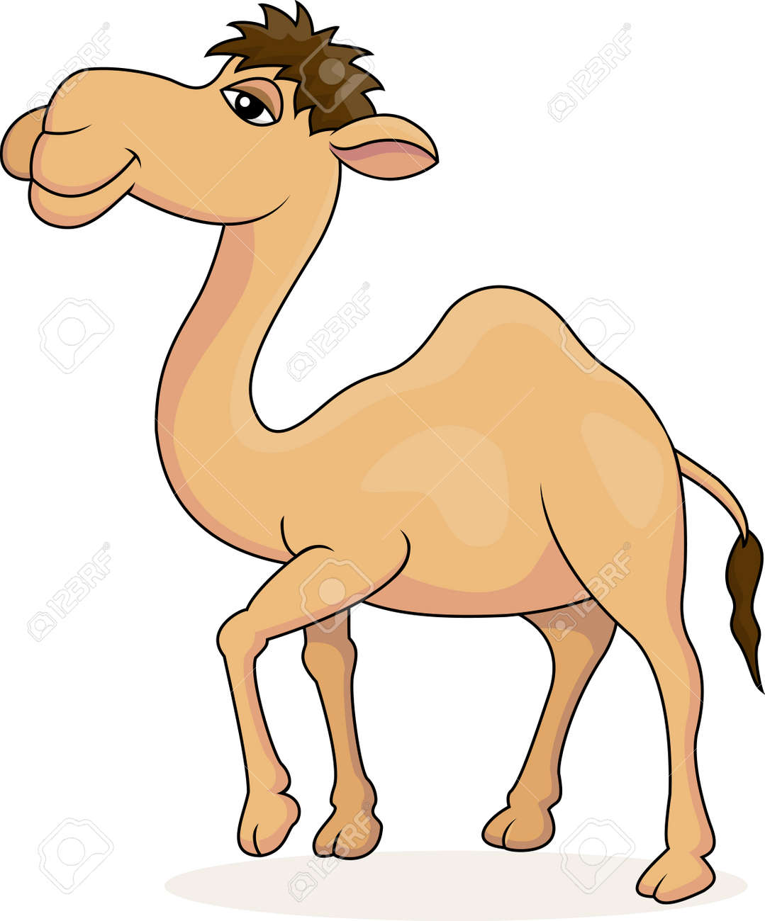 illustration of Camel cartoon