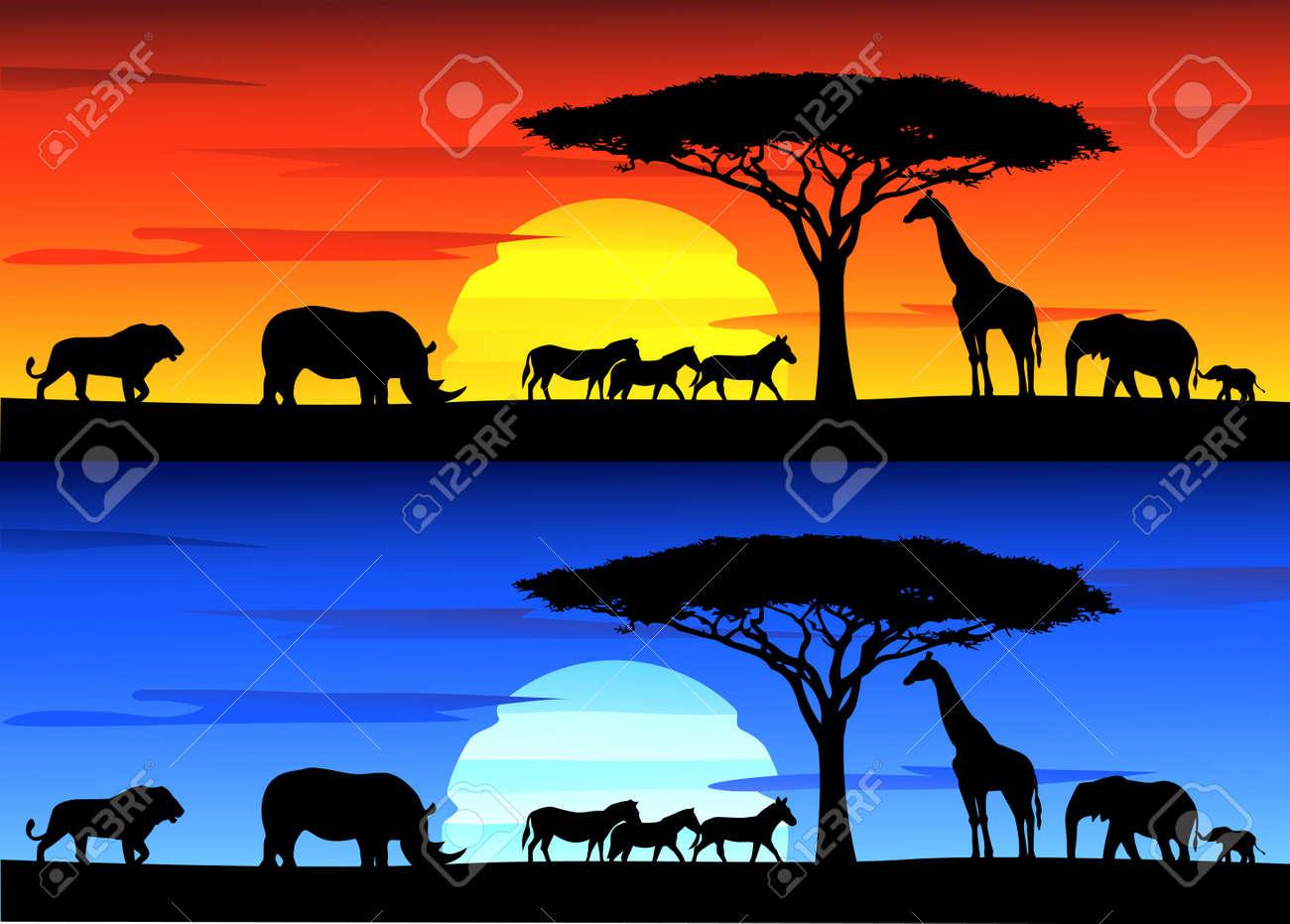 Beautiful sunset background on Africa wildlife - 14662171