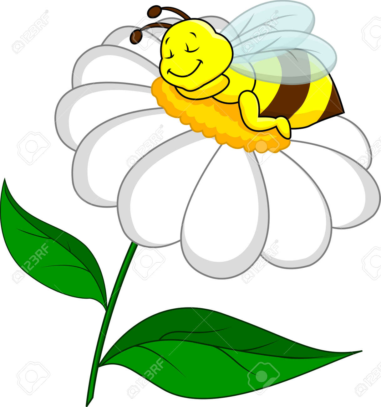 bee sleeping on flower royalty free cliparts vectors and stock
