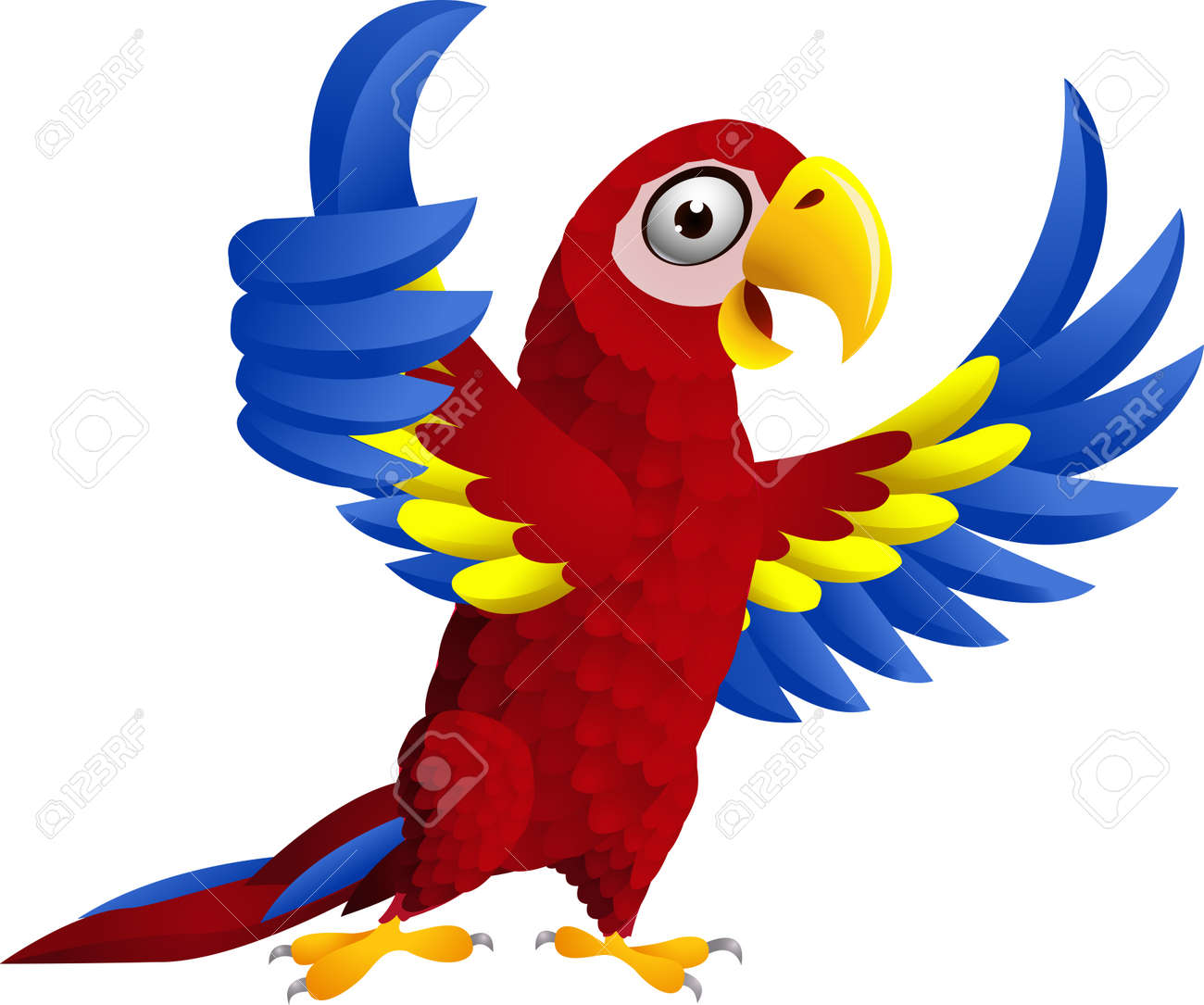 Macaw bird with thumb up - 15234349