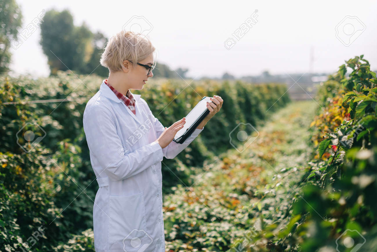 Agronomist at work. Young woman inspects plants on plantation and makes notes on tablet. - 170242550