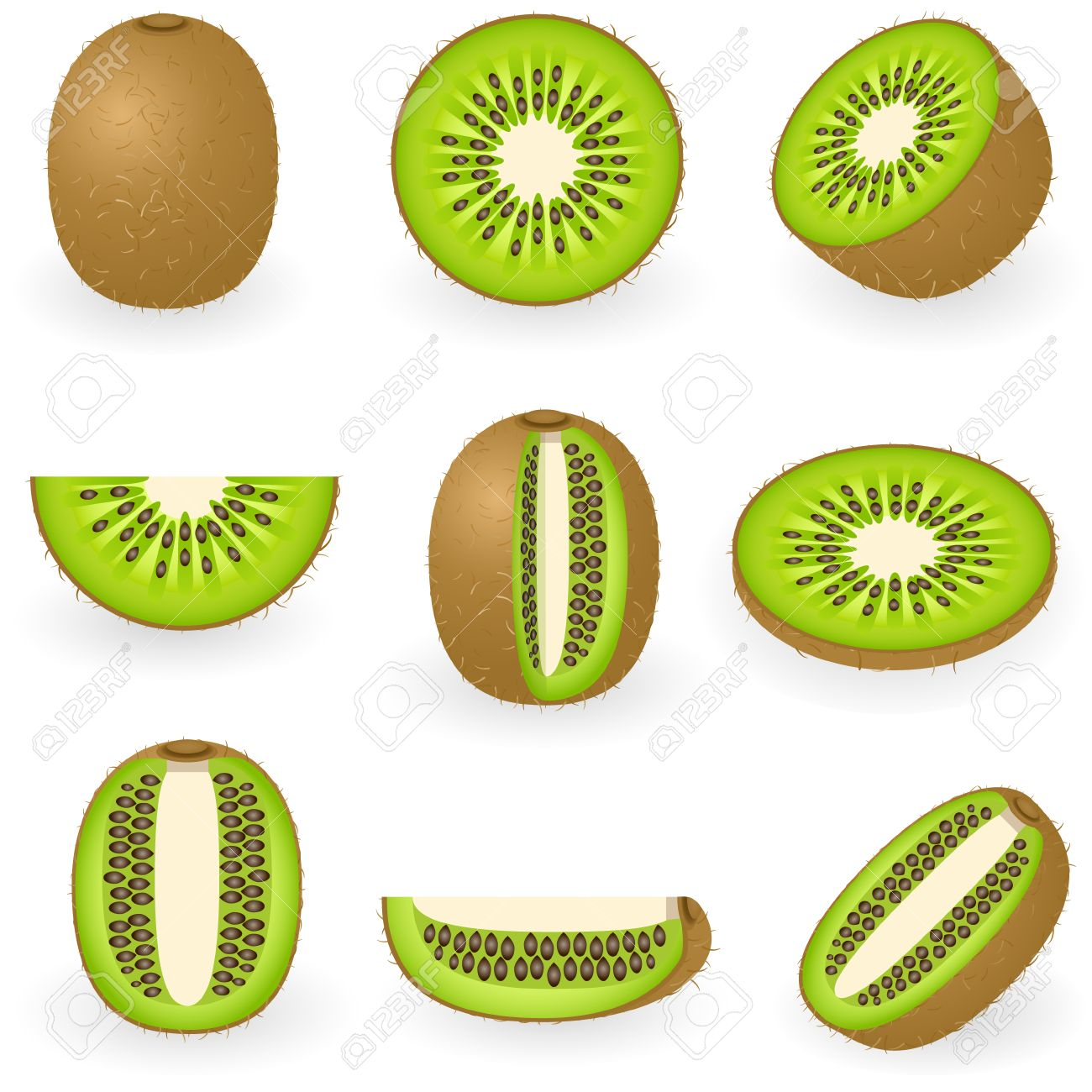 Kiwi Fruit Silhouette Kiwi Fruit Vector