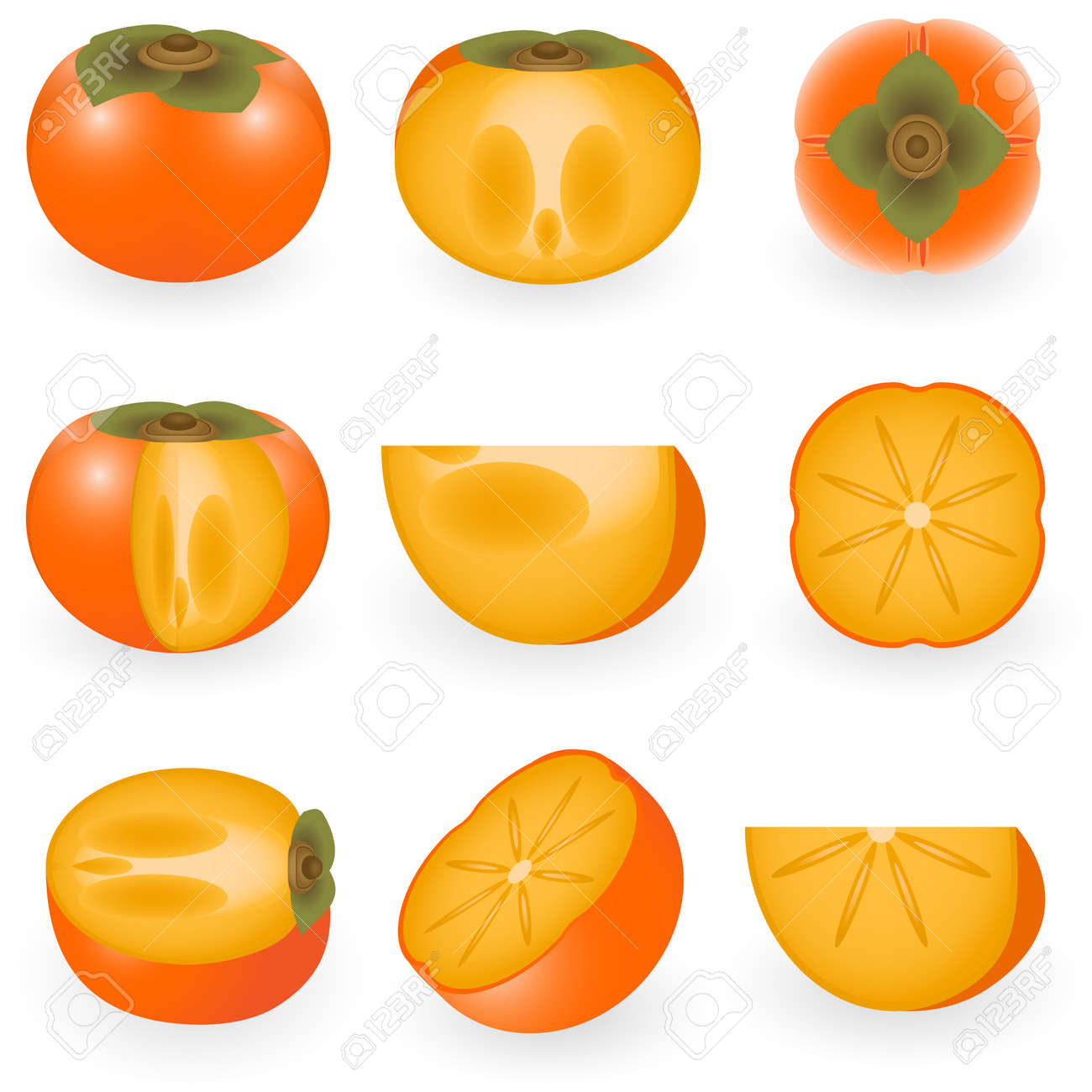 柿のベクトル イラストのイラスト素材ベクタ Image 6180683