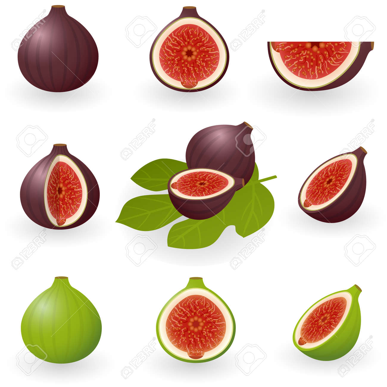 Vector illustration of figs Stock Vector - 6201974