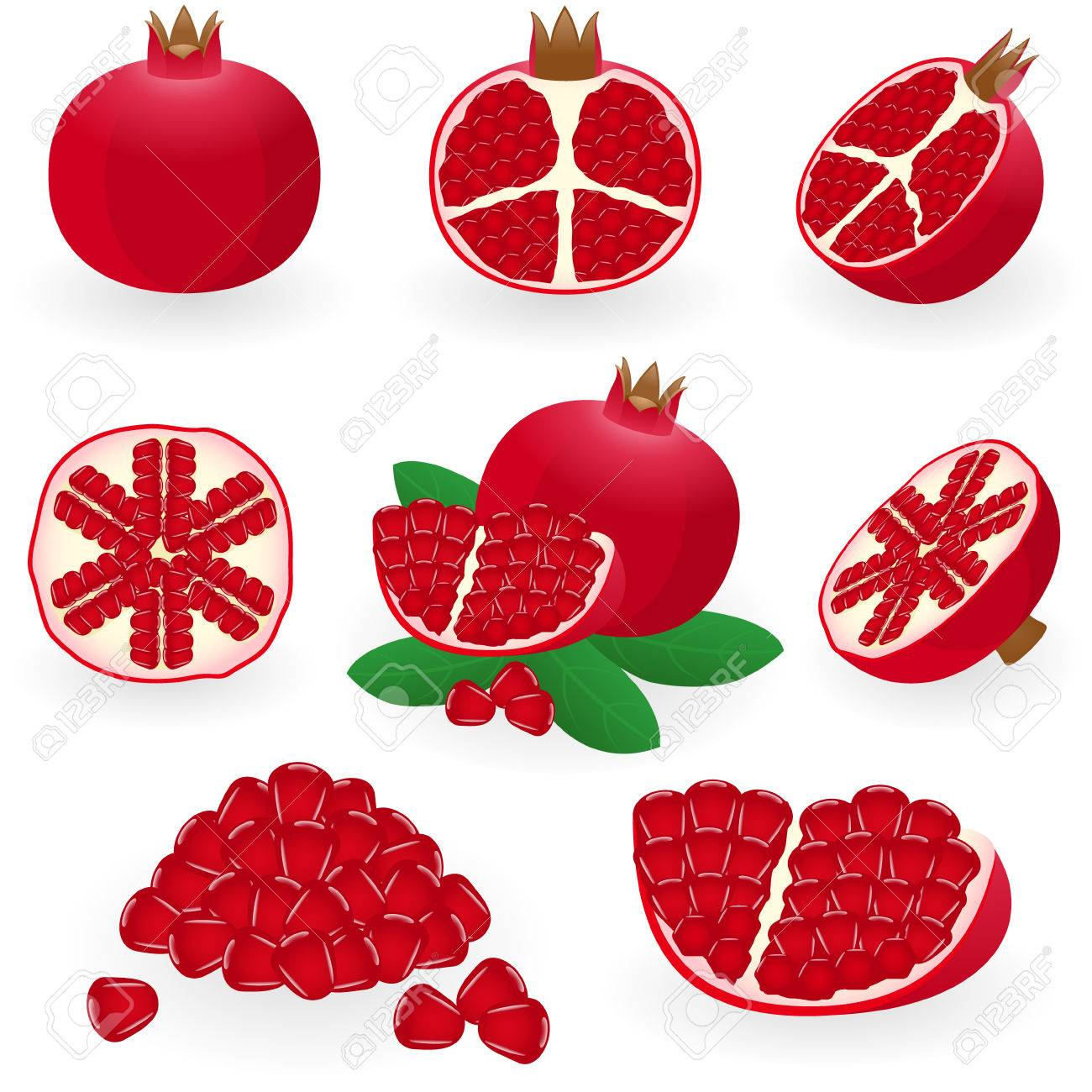 illustration of pomegranate Stock Vector - 6294536