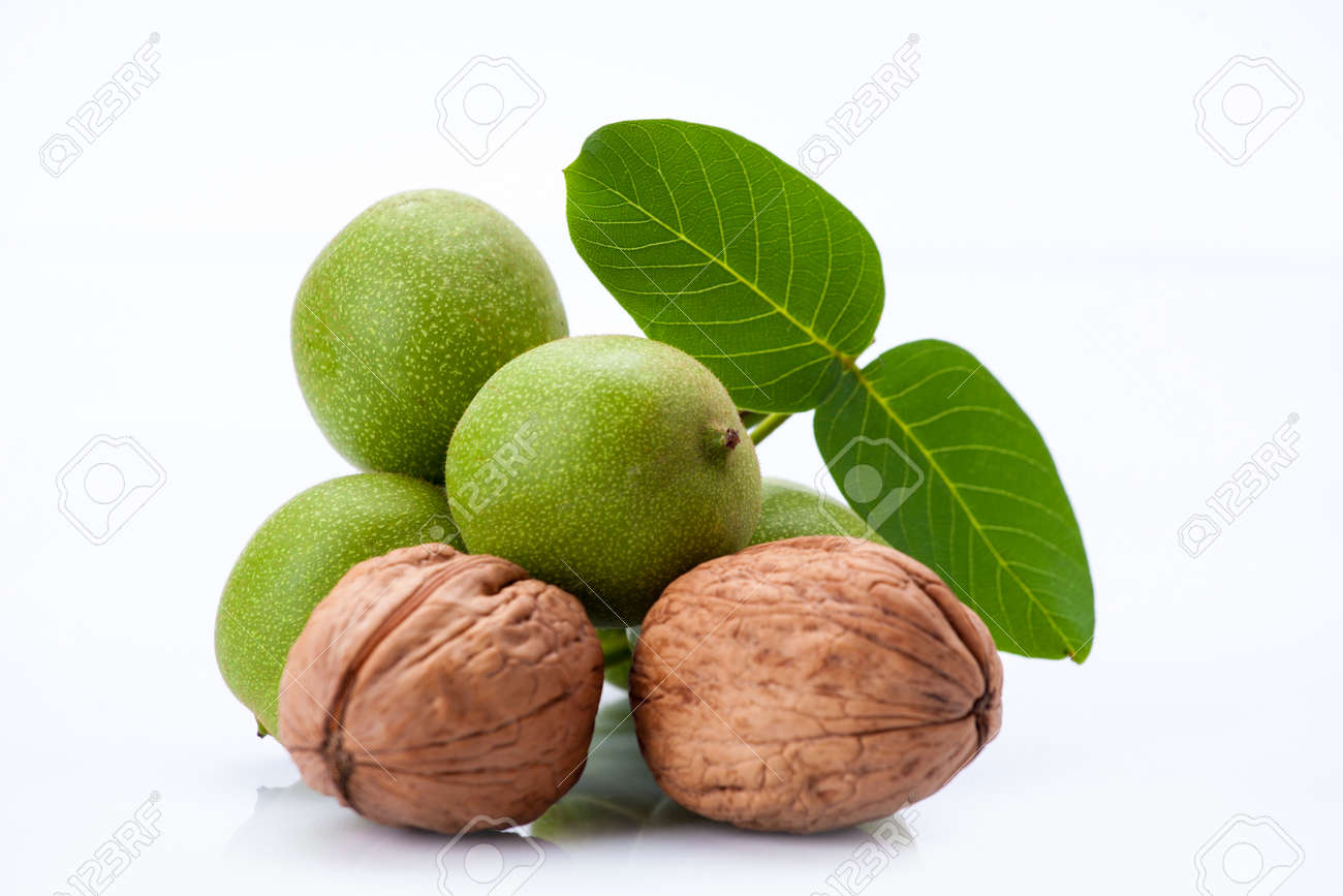 young and old walnuts with leaves isolated on whit background - 121725147