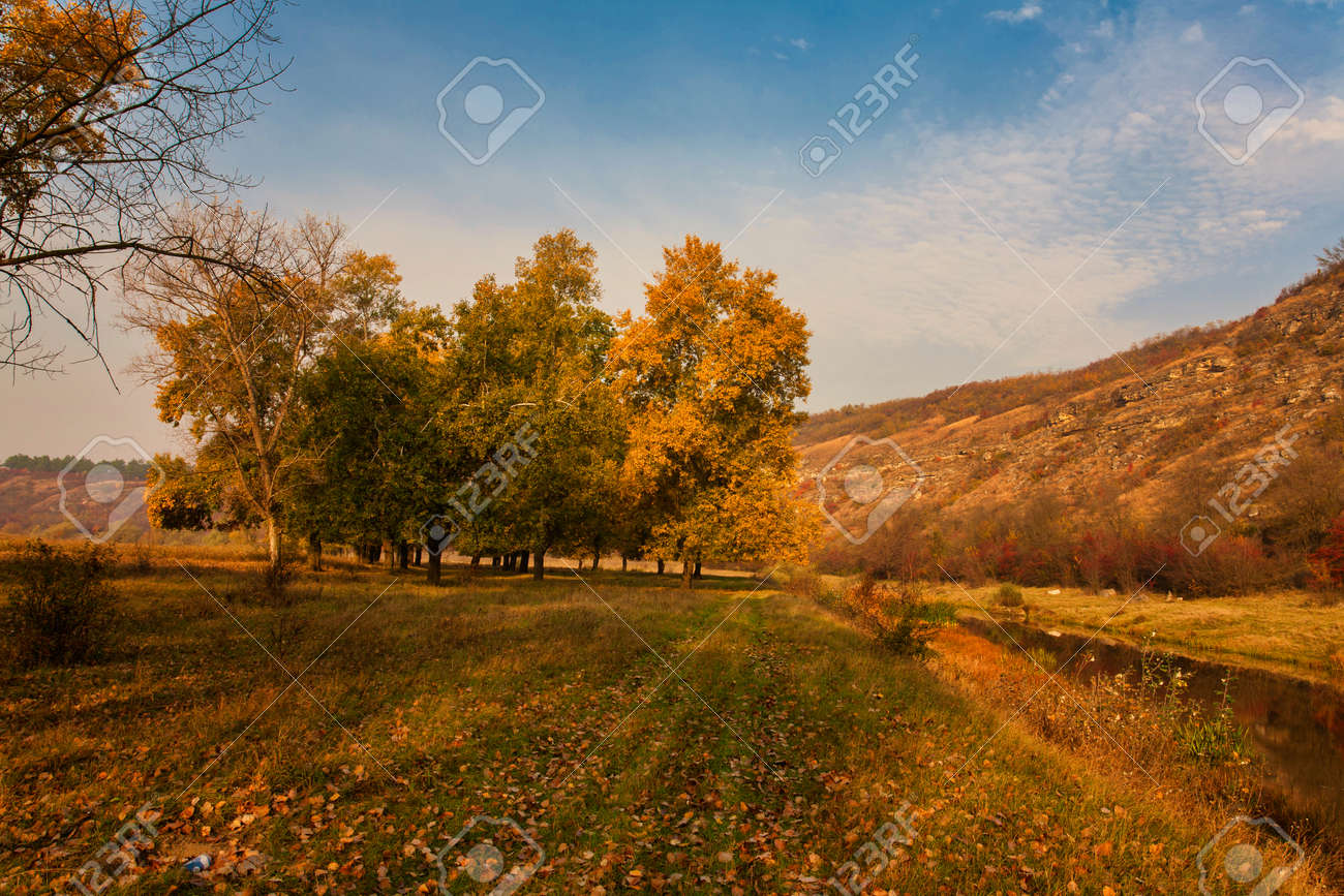 Autumn landscape. Yellow field and blue sky. - 131808541