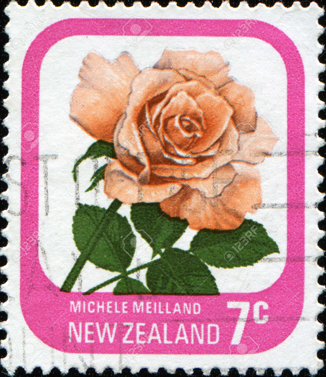 NEW ZEALAND - CIRCA 1975: A stamp printed in New Zealand shows rose Michele Meilland, series, circa 1975 Stock Photo - 11262137