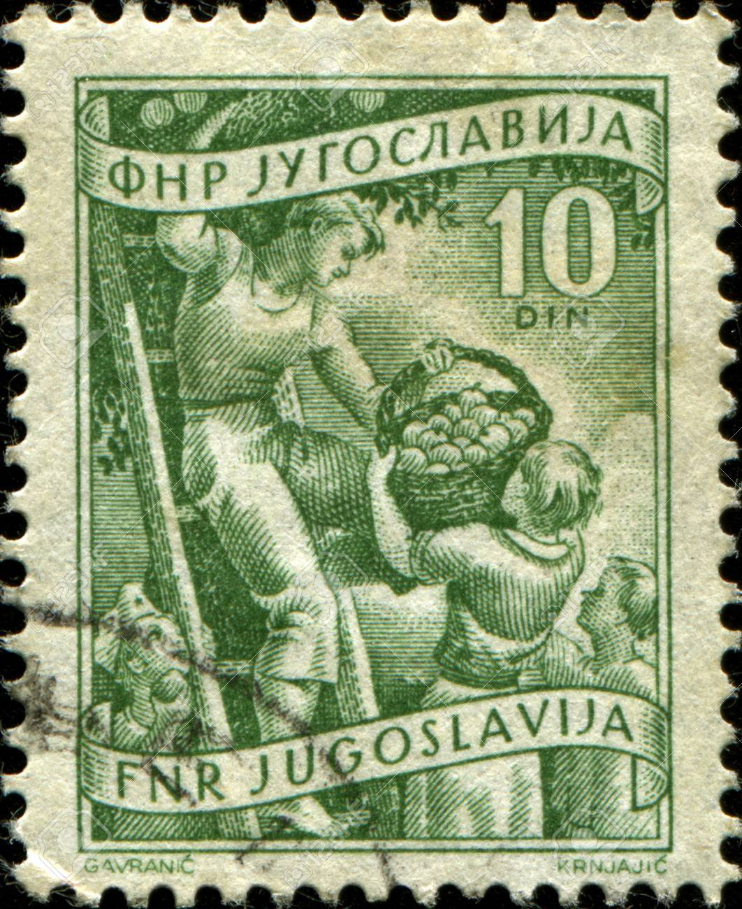YUGOSLAVIA - CIRCA 1950  A stamp printed in Yugoslavia shows people colelcting apple, circa 1950  Stock Photo - 17269763