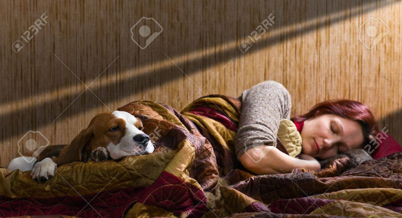 The sleeping woman and its dog , focus on a dog. Stock Photo - 12848211