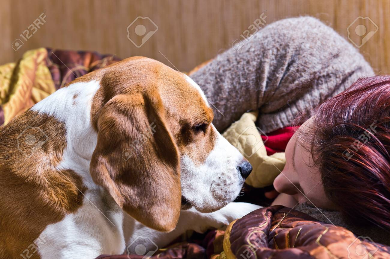 The sleeping woman and its dog . Stock Photo - 13434952