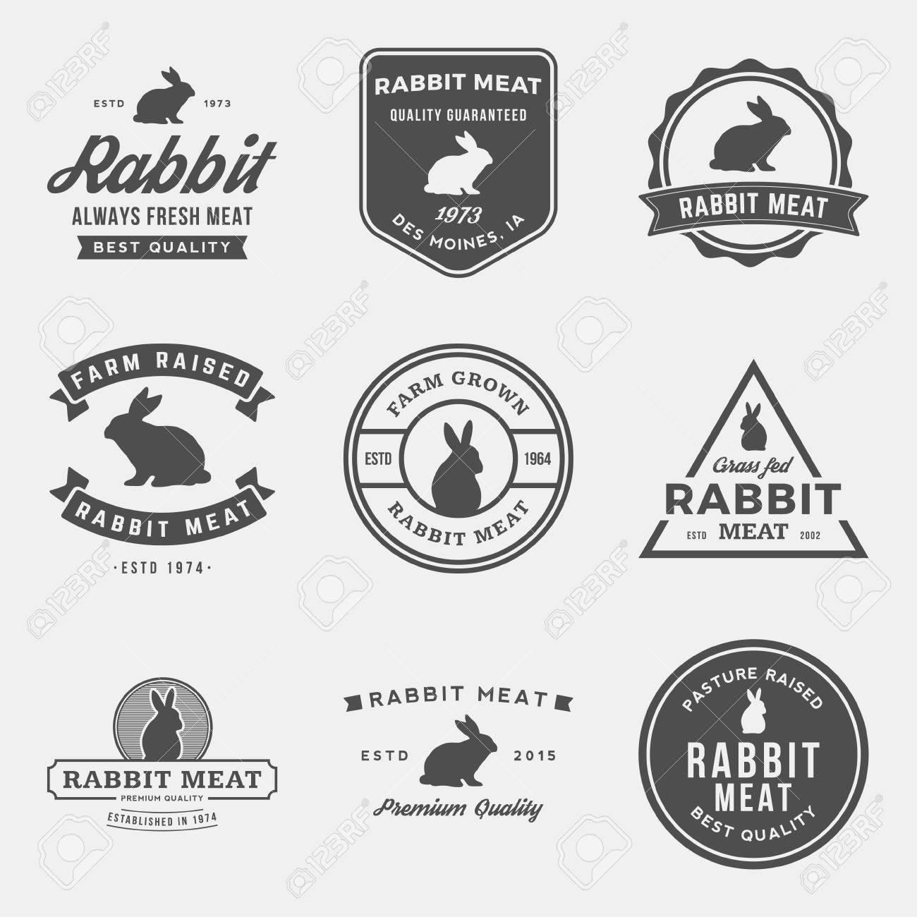 vector set of premium rabbit meat labels, badges and design elements - 42584510