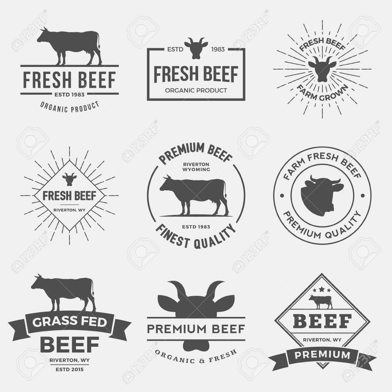 vector set of premium beef labels, badges and design elements. - 42861958