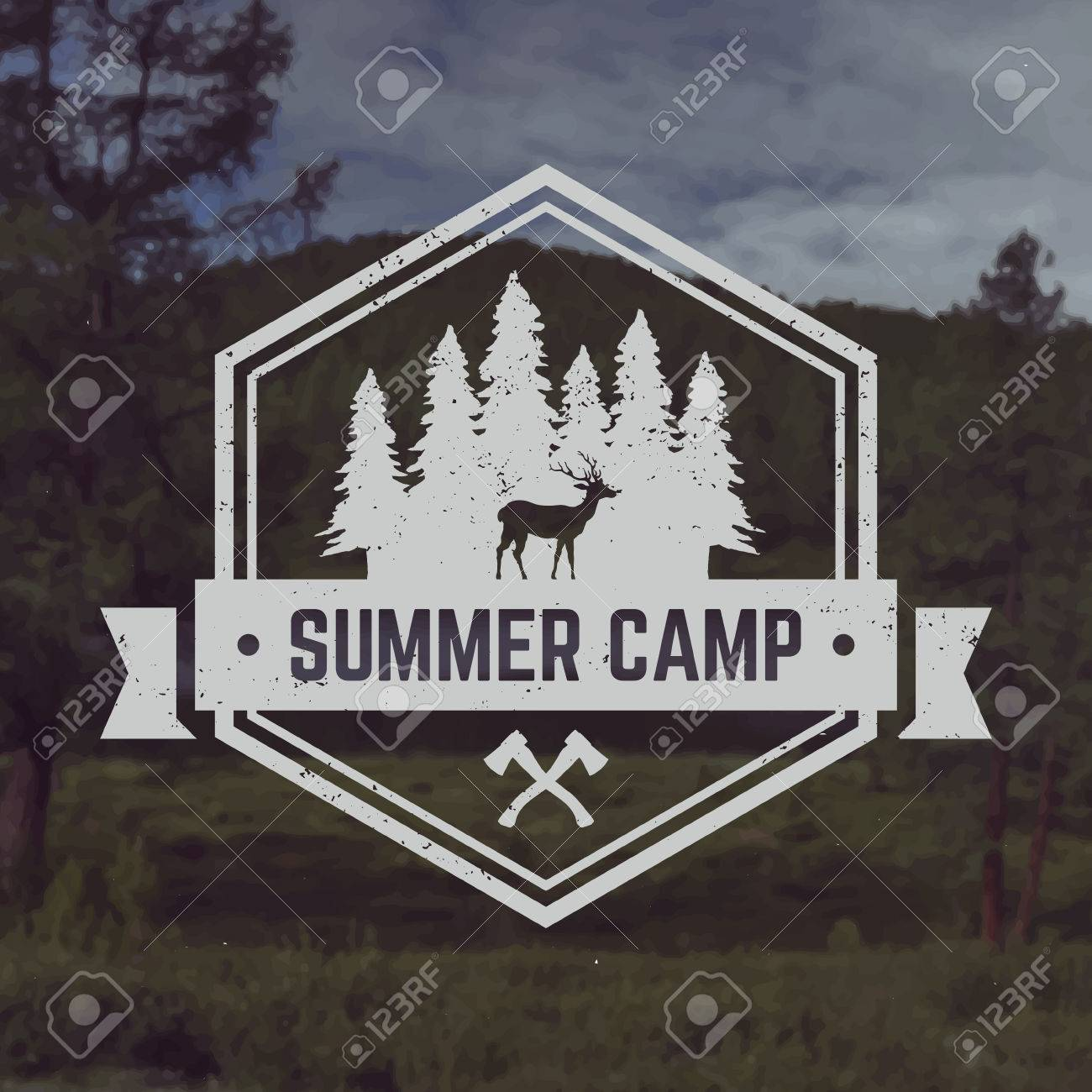 vector camping emblem. outdoor activity symbol with grunge texture on mountain landscape background - 42864192